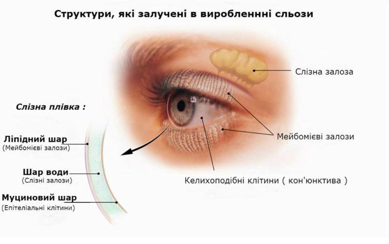 Причини синдрому «сухого ока» (ССО)